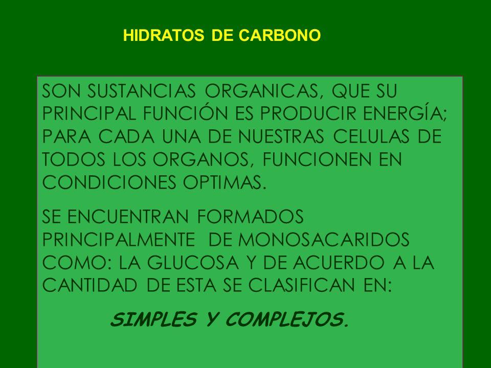 CARBOHIDRATOS COMPLEJOS TODOS LOS GRANOS, SEMILLAS Y CEREALES : FRIJOL, AVENA, HABAS,CEBADA, LENTEJAS, CENTENO, ARROZ, MAÍZ, TRIGO, ETC.