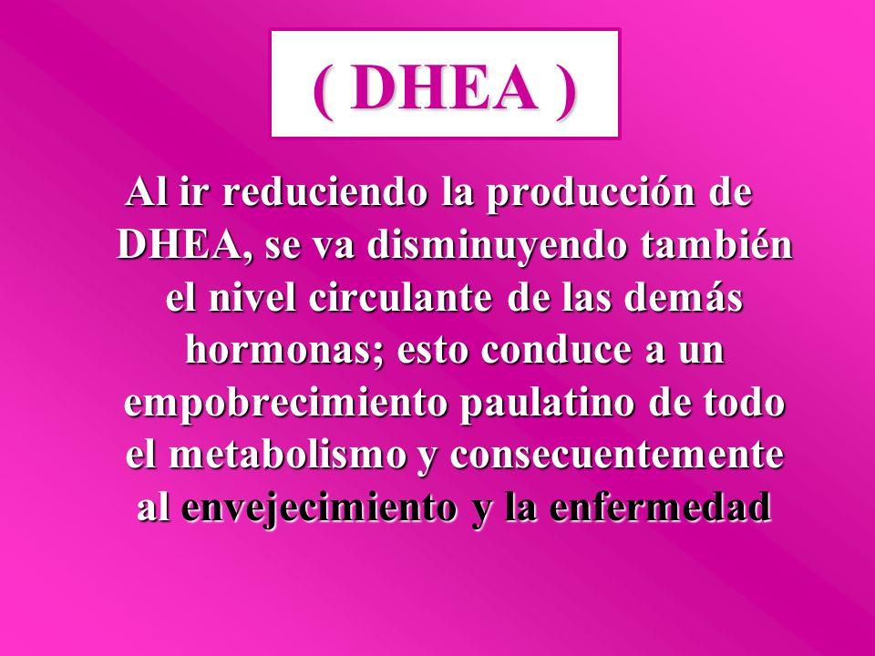 Pacientes diabéticos logran una mejoría notoria en su estado general de salud y una reducción de la Hiperglucemia cuando se aumentan sus niveles de DHEA Coleman, D.L., Leiter, E.H.