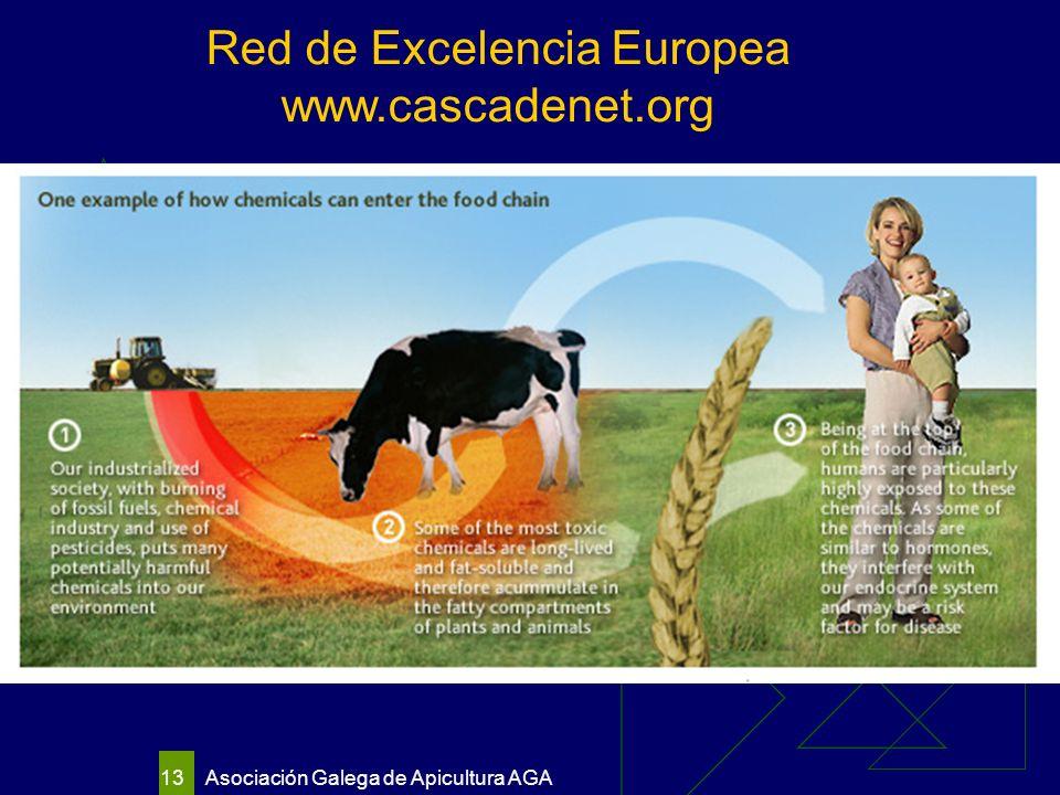 Asociación Galega de Apicultura AGA 13 Red de Excelencia Europea www.cascadenet.org