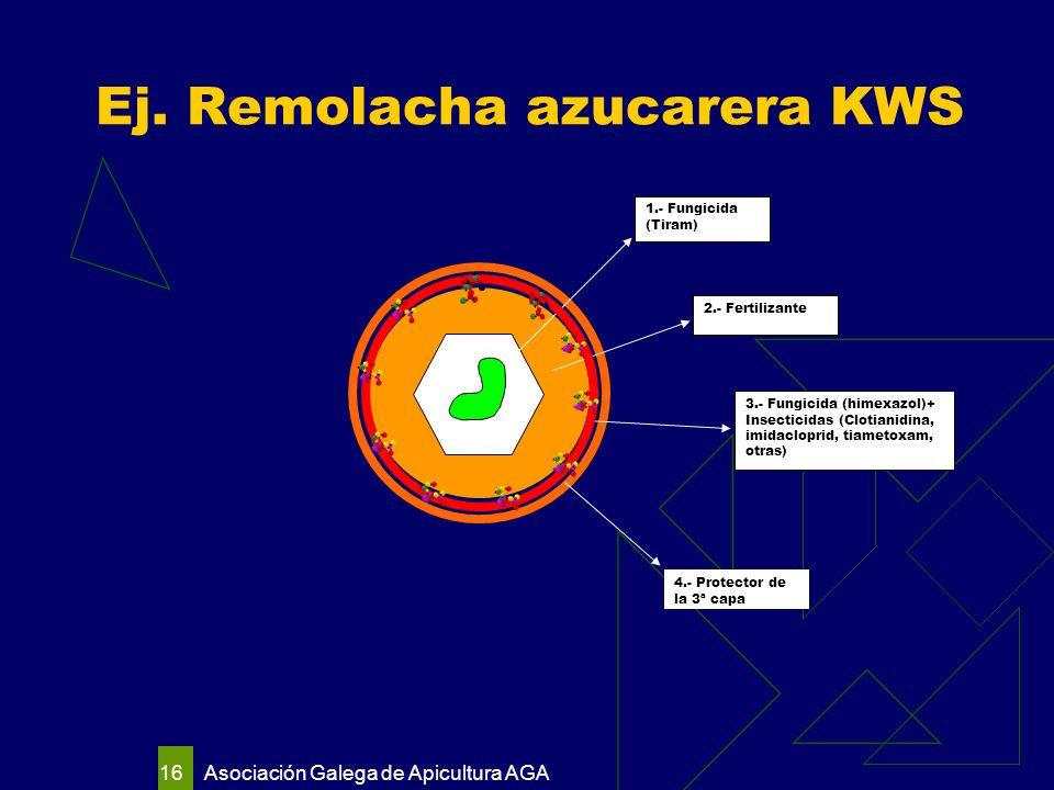 Asociación Galega de Apicultura AGA 16 Ej.