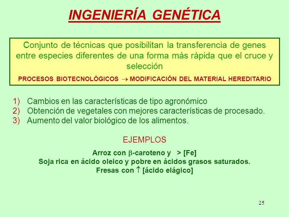 25 Conjunto de técnicas que posibilitan la transferencia de genes entre especies diferentes de una forma más rápida que el cruce y selección PROCESOS BIOTECNOLÓGICOS MODIFICACIÓN DEL MATERIAL HEREDITARIO 1)Cambios en las características de tipo agronómico 2)Obtención de vegetales con mejores características de procesado.