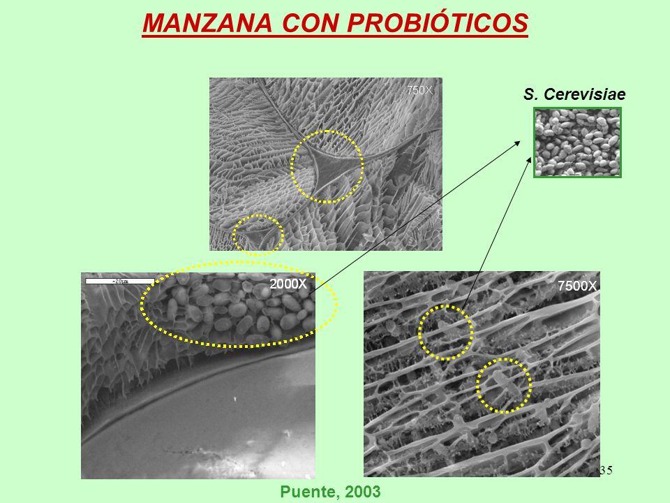 35 MANZANA CON PROBIÓTICOS 7500X Puente, 2003 S. Cerevisiae