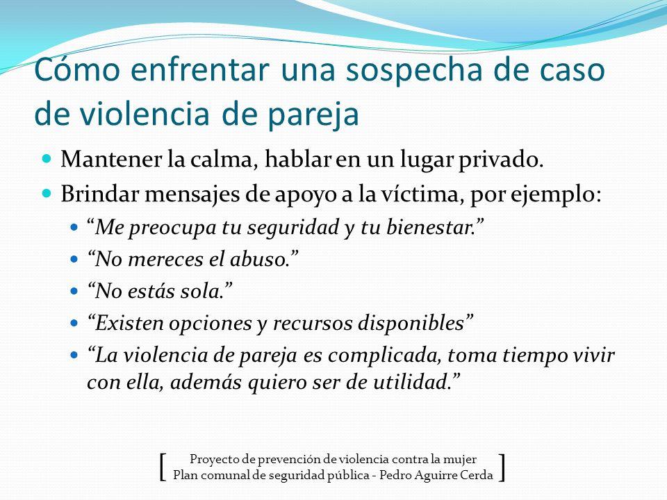 Proyecto de prevención de violencia contra la mujer Plan comunal de seguridad pública - Pedro Aguirre Cerda ] [ Cómo enfrentar una sospecha de caso de