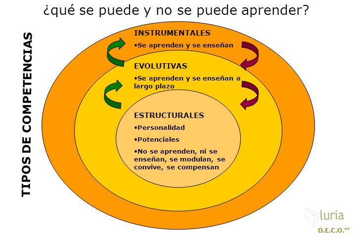 TIPOS DE COMPETENCIAS ESTRUCTURALES Personalidad Potenciales No se aprenden, ni se enseñan, se modulan, se convive, se compensan EVOLUTIVAS Se aprende