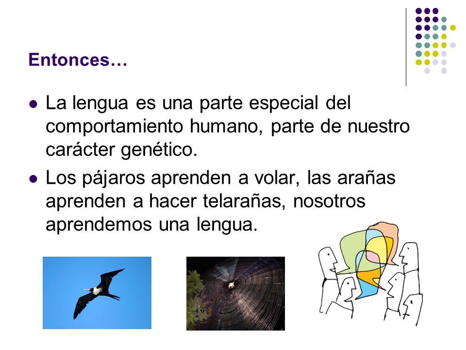 Entonces… La lengua es una parte especial del comportamiento humano, parte de nuestro carácter genético. Los pájaros aprenden a volar, las arañas apre