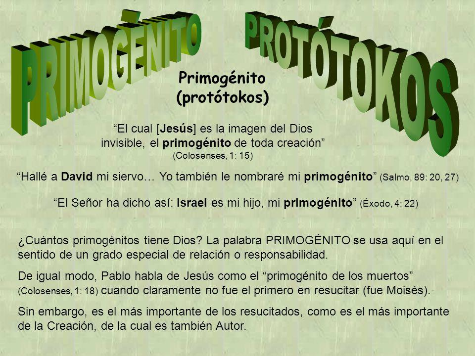 Primogénito (protótokos) El cual [Jesús] es la imagen del Dios invisible, el primogénito de toda creación (Colosenses, 1: 15) Hallé a David mi siervo… Yo también le nombraré mi primogénito (Salmo, 89: 20, 27) El Señor ha dicho así: Israel es mi hijo, mi primogénito (Éxodo, 4: 22) ¿Cuántos primogénitos tiene Dios.