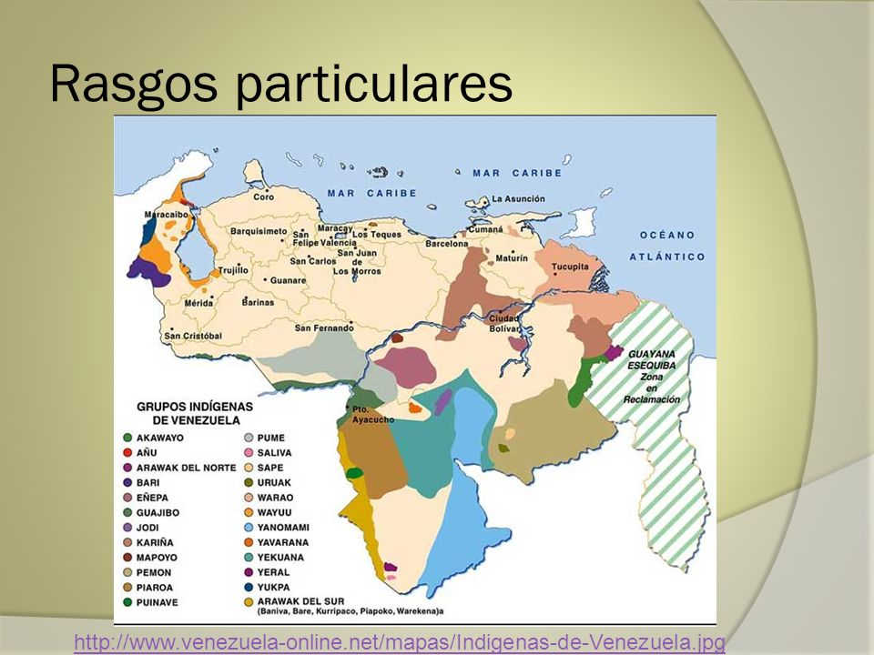 Rasgos particulares http://www.venezuela-online.net/mapas/Indigenas-de-Venezuela.jpg