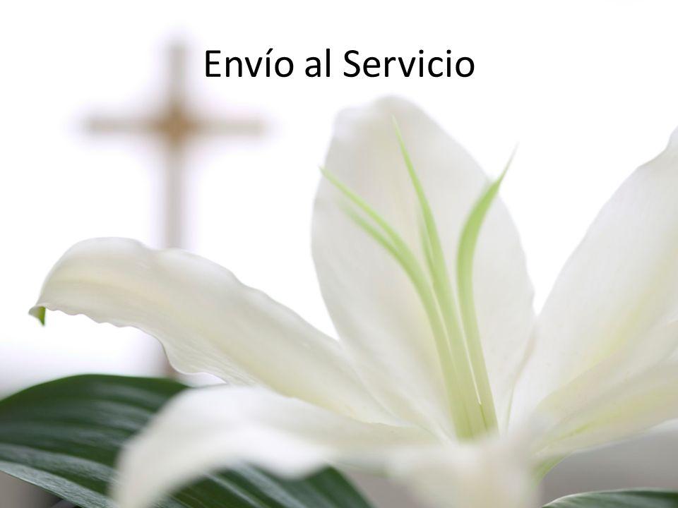 Envío al Servicio