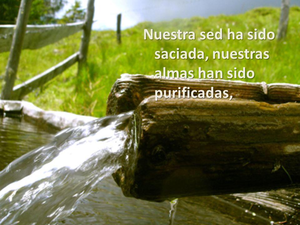Nuestra sed ha sido saciada, nuestras almas han sido purificadas,