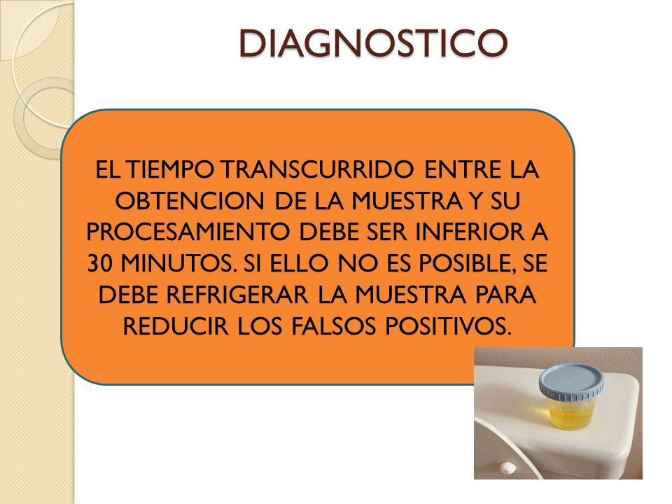DIAGNOSTICO EL TIEMPO TRANSCURRIDO ENTRE LA OBTENCION DE LA MUESTRA Y SU PROCESAMIENTO DEBE SER INFERIOR A 30 MINUTOS.