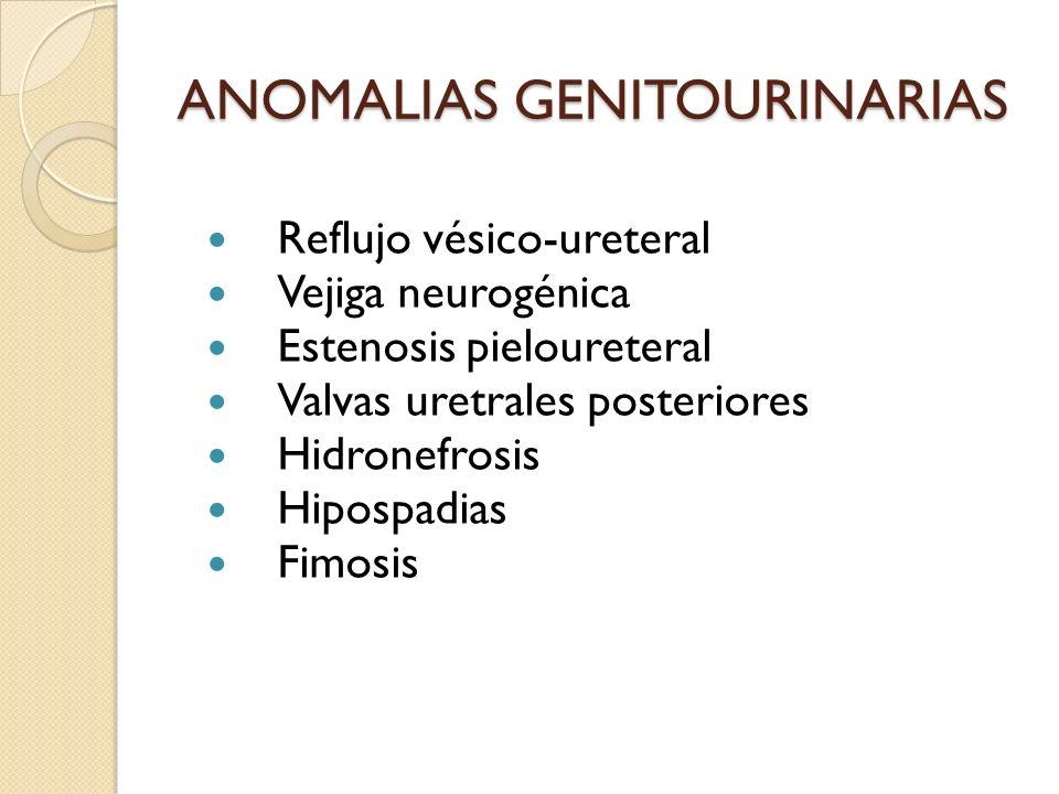 ANOMALIAS GENITOURINARIAS Reflujo vésico-ureteral Vejiga neurogénica Estenosis pieloureteral Valvas uretrales posteriores Hidronefrosis Hipospadias Fimosis
