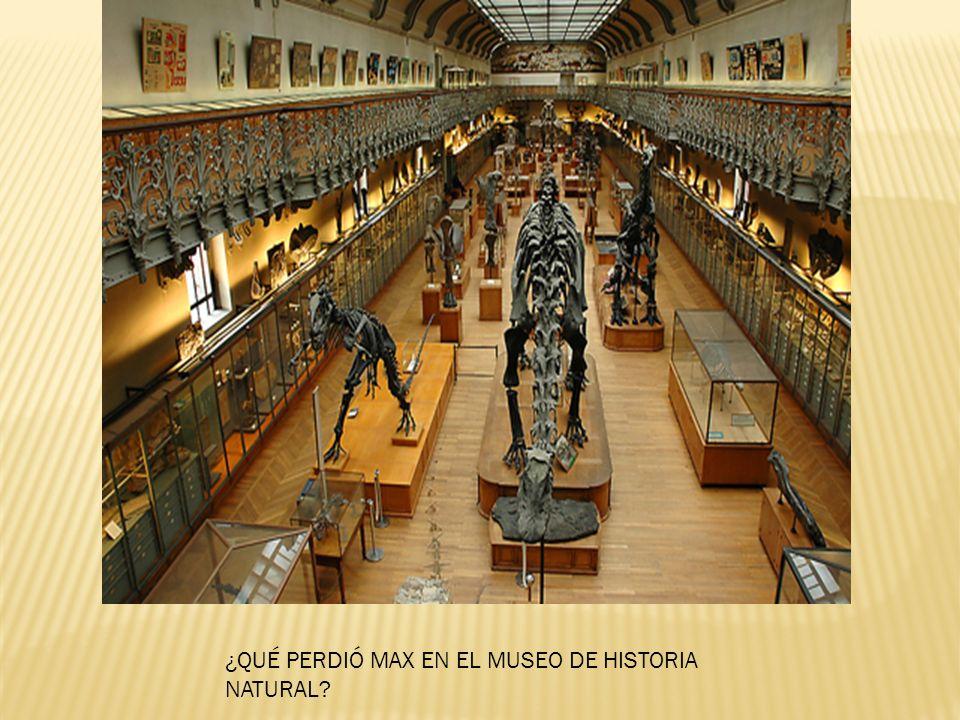¿QUÉ PERDIÓ MAX EN EL MUSEO DE HISTORIA NATURAL?