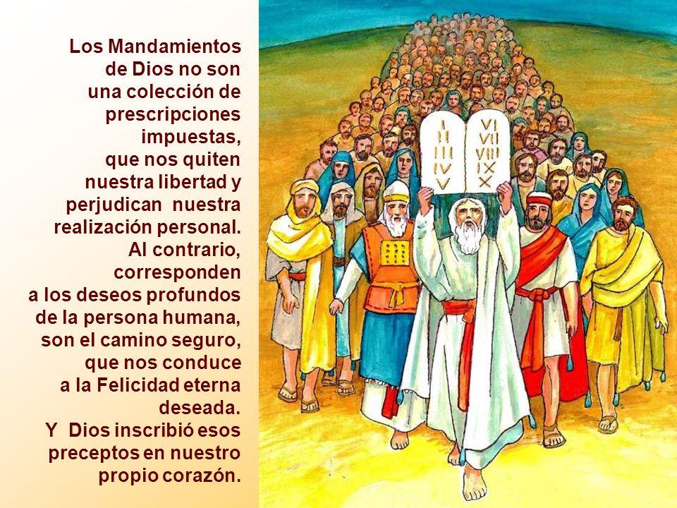 Los Mandamientos de Dios no son una colección de prescripciones impuestas, que nos quiten nuestra libertad y perjudican nuestra realización personal.