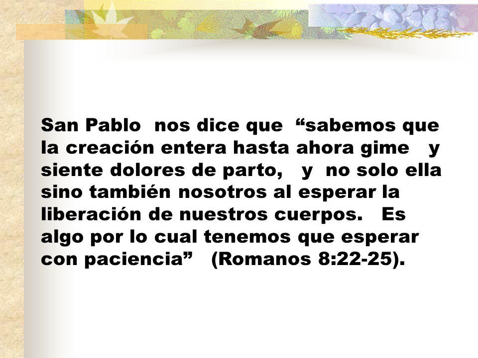 San Pablo nos dice que sabemos que la creación entera hasta ahora gime y siente dolores de parto, y no solo ella sino también nosotros al esperar la l