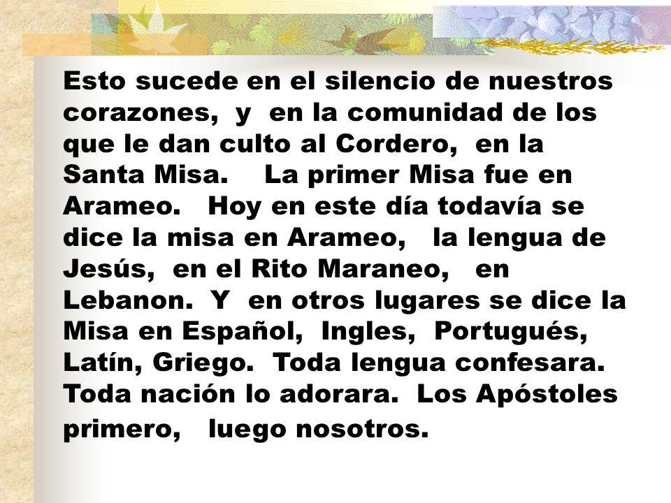 Esto sucede en el silencio de nuestros corazones, y en la comunidad de los que le dan culto al Cordero, en la Santa Misa.