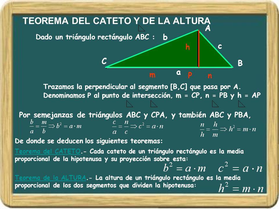 TEOREMA DEL CATETO Y DE LA ALTURA Dado un triángulo rectángulo ABC : A B C a b c Por semejanzas de triángulos ABC y CPA, y también ABC y PBA, Trazamos
