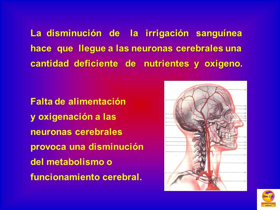 La disminución de la irrigación sanguínea hace que llegue a las neuronas cerebrales una cantidad deficiente de nutrientes y oxigeno. Falta de alimenta