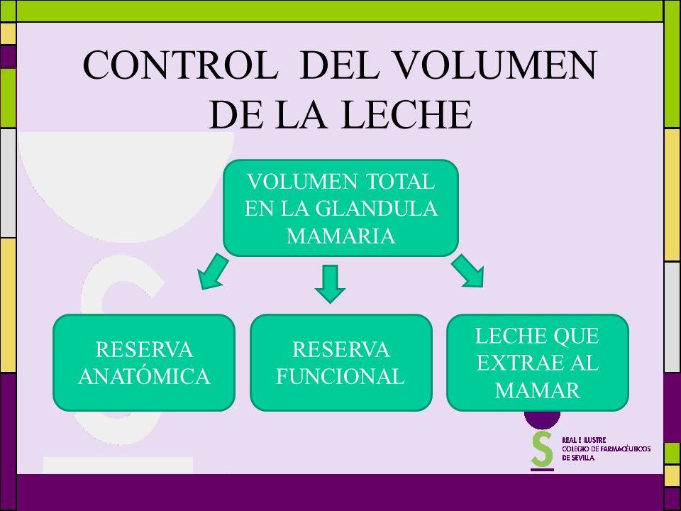 CONTROL DEL VOLUMEN DE LA LECHE VOLUMEN TOTAL EN LA GLANDULA MAMARIA RESERVA ANATÓMICA RESERVA FUNCIONAL LECHE QUE EXTRAE AL MAMAR