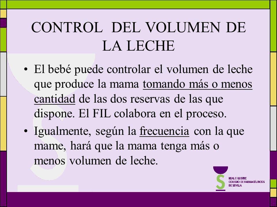 CONTROL DEL VOLUMEN DE LA LECHE El bebé puede controlar el volumen de leche que produce la mama tomando más o menos cantidad de las dos reservas de la