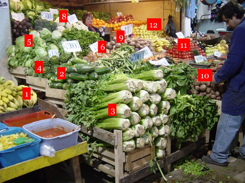 (las) lechugas (el) apio (las) alcachofas (las) cebollas (las) patatas (los) tomates (los) plátanos (las) coliflores (los) limones (los) calabacines