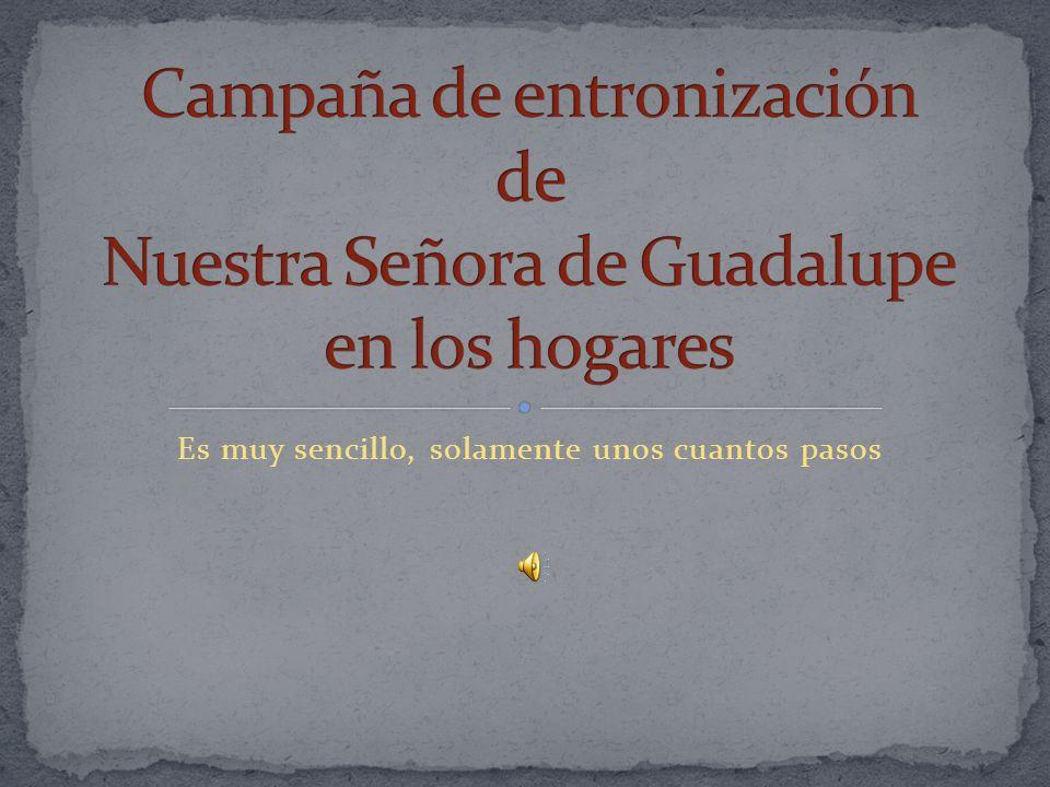 Para mayor información sobre esta campaña, escríbenos a: campanagpemex@hotmail.com Banco de imágenes y documentos http://www.vidayvalores.com/Guadalupe.pdf