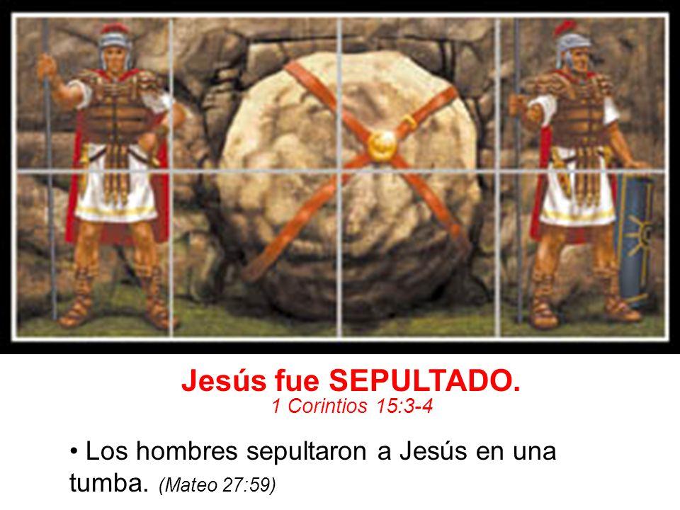 Jesús fue SEPULTADO. 1 Corintios 15:3-4 Los hombres sepultaron a Jesús en una tumba. (Mateo 27:59)