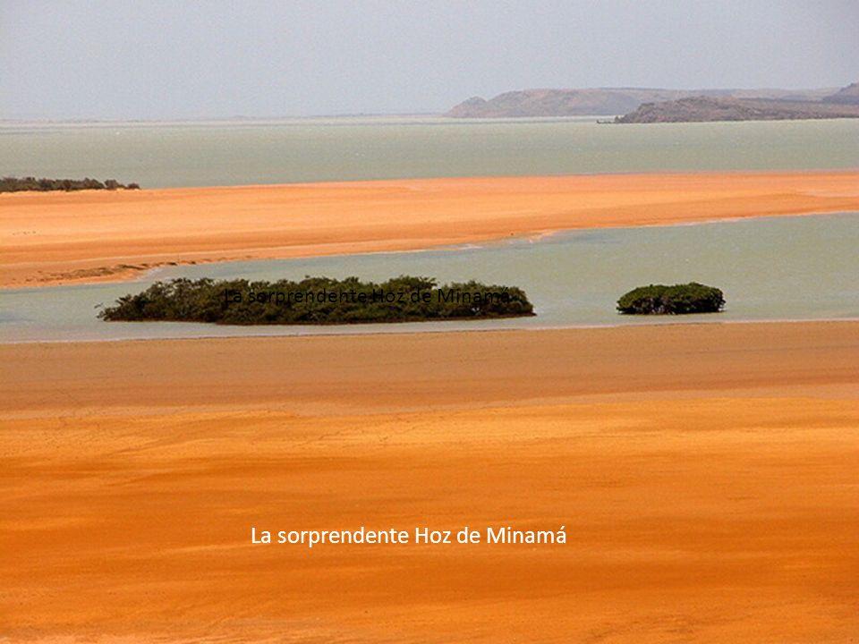 No es Marte, no es el mar rojo, es........ EL CAÑO CRISTALES Desde la tierra, desde el cielo, como sea es Hermosa.......... La Guajira