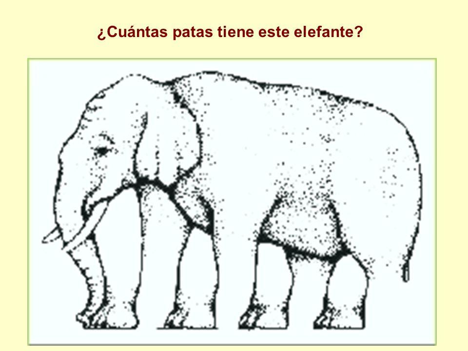 ¿Cuántas patas tiene este elefante?