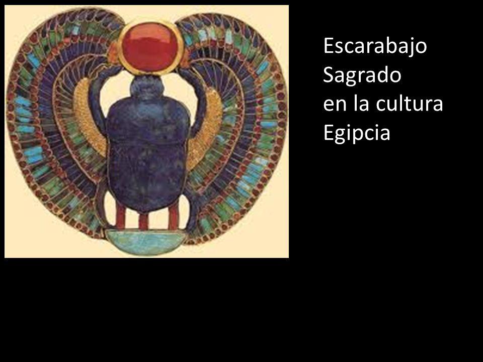 Escarabajo Sagrado en la cultura Egipcia