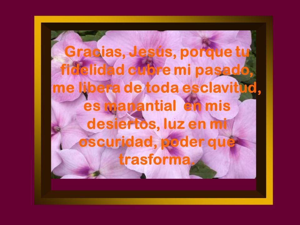 ¡Señor, tu eres Dios.En las dificultades se trasluce mi debilidad y tu fortaleza.