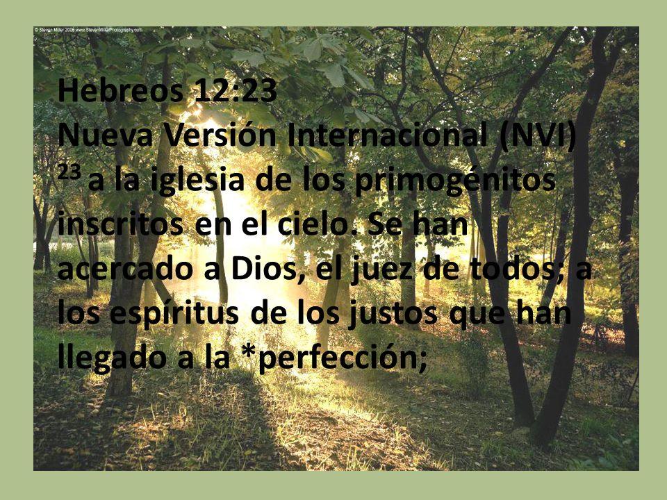: Hebreos 12:23 Nueva Versión Internacional (NVI) 23 a la iglesia de los primogénitos inscritos en el cielo. Se han acercado a Dios, el juez de todos;