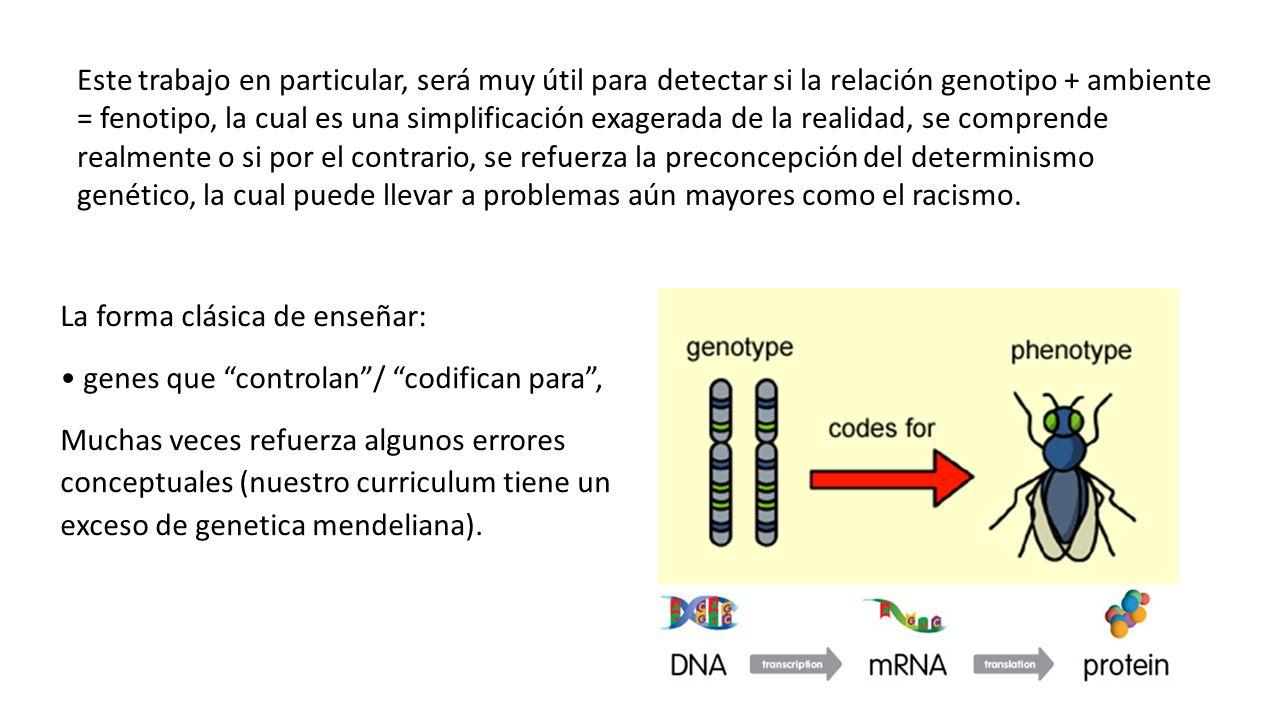 Algunos problemas con esta forma clásica de enseñar genética: La herencia Mendeliana es insuficiente (epistasis, pleiotropía, plasticidad, epigenética) genes no son unidades discretas en los cromosomas (cortes alternativos, sobreposición genes) DNA no codifica simplemente para proteinas (regulación génica, expresión diferencial dependiendo del desarrollo o la estructura)
