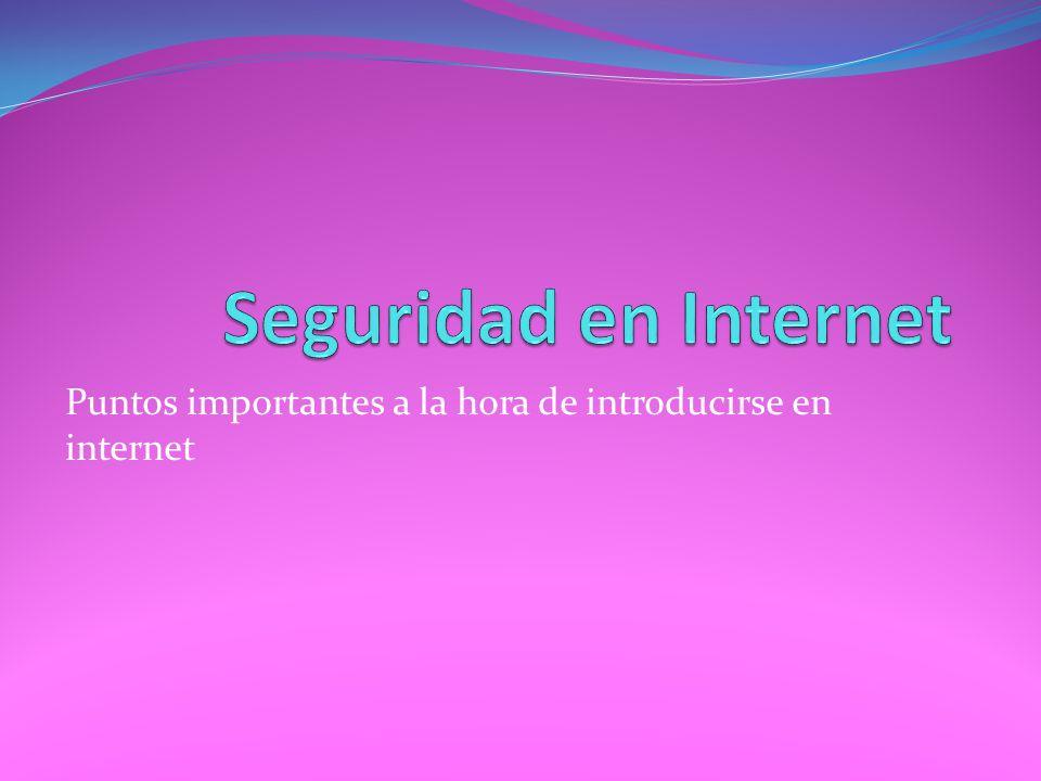 Puntos importantes a la hora de introducirse en internet