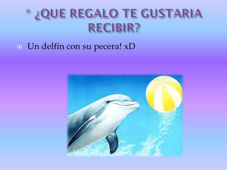 Un delfín con su pecera! xD