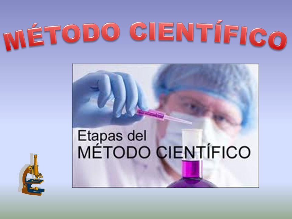 Anota todas las medidas y resultados del experimento.