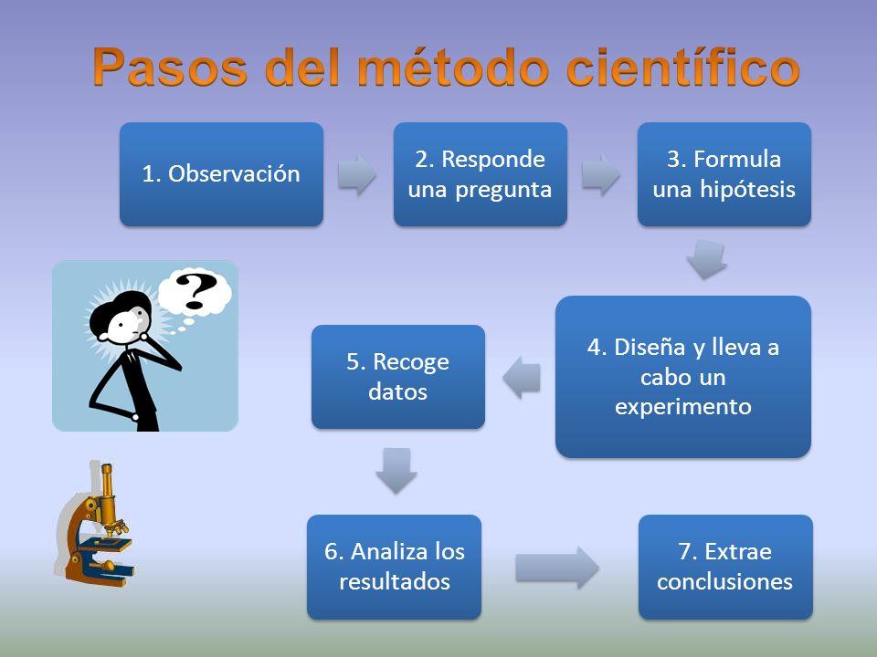 1. Observación 2. Responde una pregunta 3. Formula una hipótesis 4. Diseña y lleva a cabo un experimento 5. Recoge datos 6. Analiza los resultados 7.