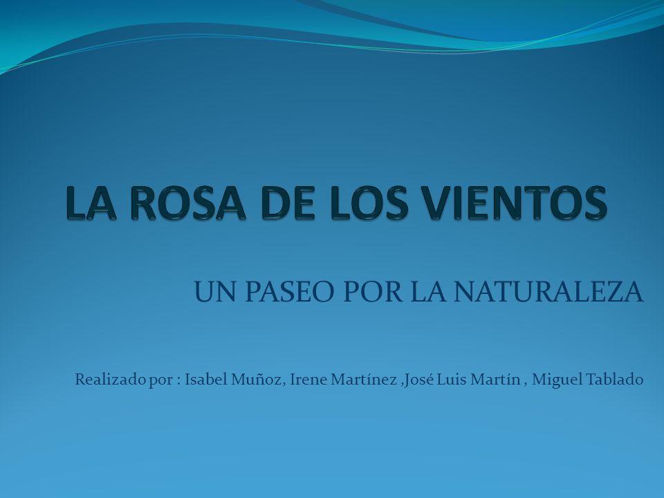UN PASEO POR LA NATURALEZA Realizado por : Isabel Muñoz, Irene Martínez,José Luis Martín, Miguel Tablado