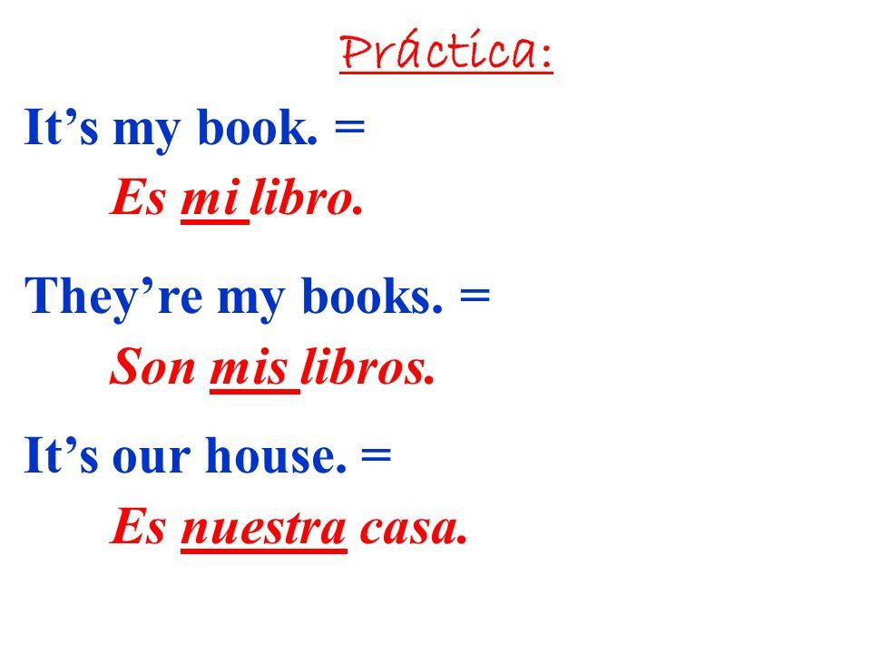 Práctica: Its my book.= Es mi libro. Theyre my books.