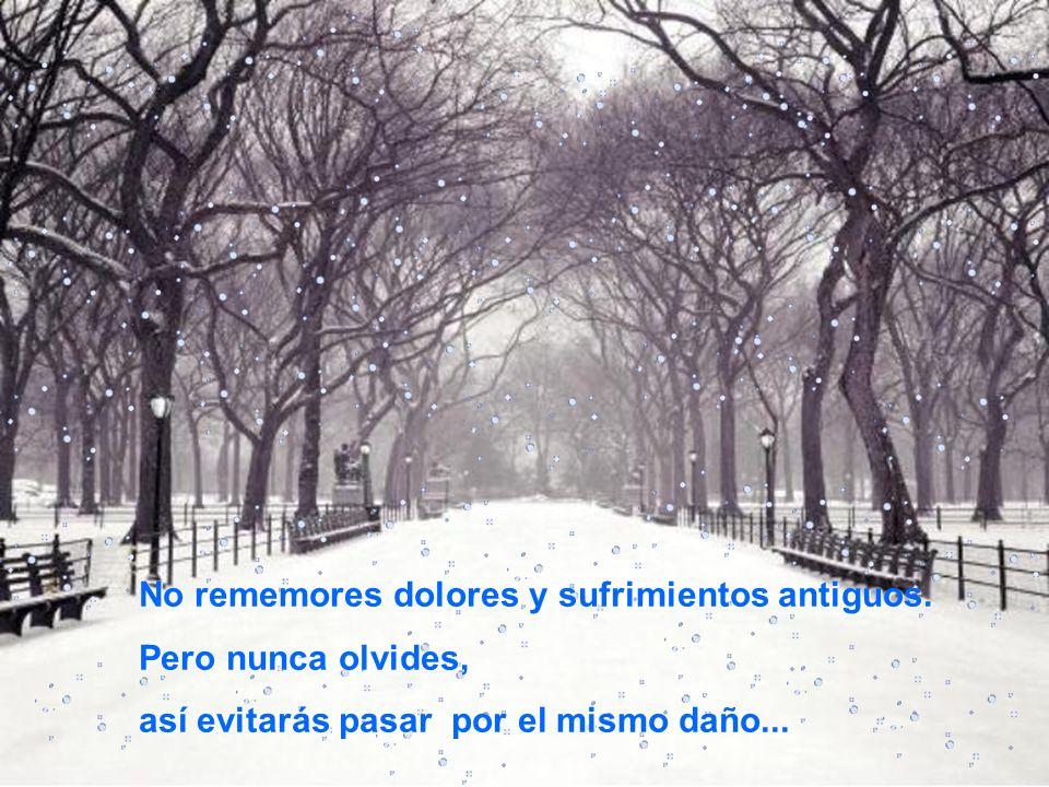 No seas esclavo del pasado y los recuerdos tristes. No revuelvas una herida que está cicatrizada.