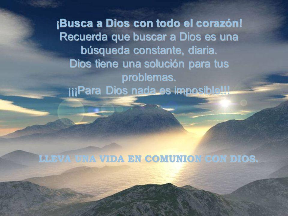 ¡Busca a Dios con todo el corazón.Recuerda que buscar a Dios es una búsqueda constante, diaria.