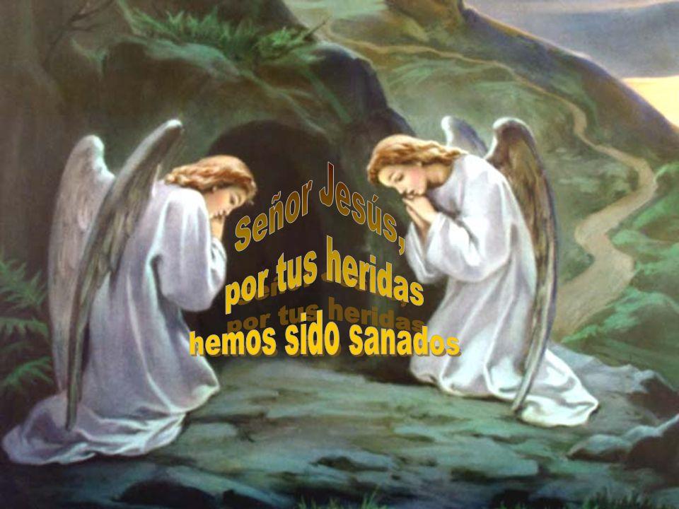 Que también nosotros podamos sanar a cuantos estén a nuestro alcance. Belgran Cohen Señor Jesús, por tus heridas hemos sido sanados. Amén. Beato Alber