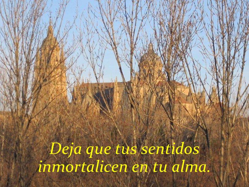 Deja tu alma en Salamanca. Acércate al frio del calor de esta ciudad.