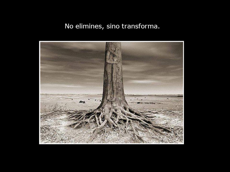 No elimines, sino transforma.
