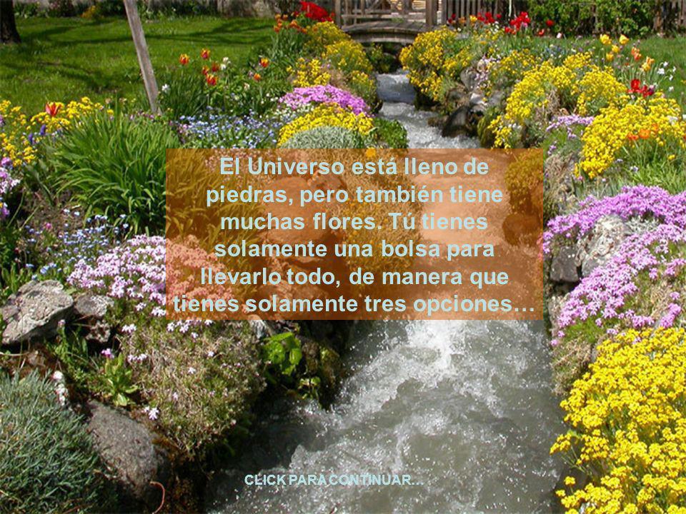 El Universo está lleno de piedras, pero también tiene muchas flores.