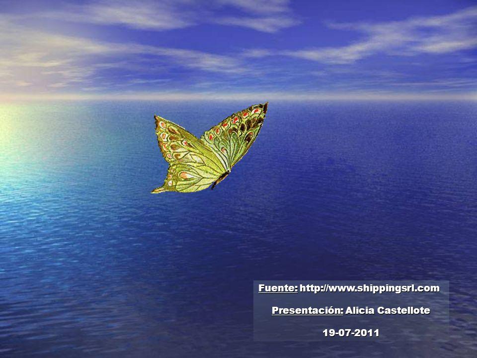 No importan las circunstancias, ni el momento de la vida en que la mariposa se pose en tu hombro… Ese será el momento de comenzar el vuelo, con el con