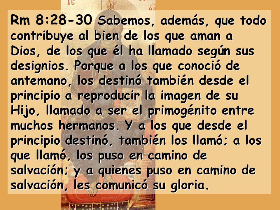 La CARTA A LOS ROMANOS solamente se lee en el ciclo A, del domingo 9 al 24 Jesús salva a los pecadores que tienen FE - Todos somos pecadores, judíos y paganos 1 a 3,20 - Pero la Fe en Jesús nos hace justos por su misericordia 3,21 a 4 · Ejemplo d Abraham que fue justo por la Fe - Domingo 10 Por Jesucristo somos justos - La salvación gratuita nos da la liberación del pecado y de la Ley 5-7 · Donde hubo el pecado de Adán, sobreabundó la gracia de Jesús, el nuevo Adán.