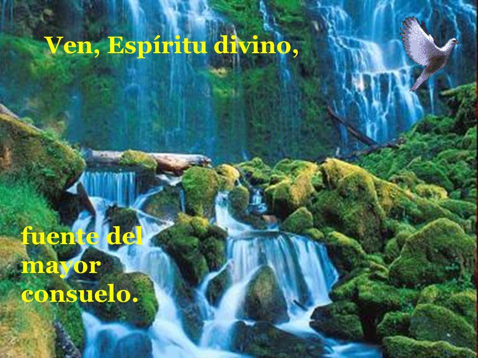 manda tu luz desde el cielo. Padre amoroso del pobre; don, en tus dones espléndido; luz que penetra las almas; Ven, Espíritu divino, fuente del mayor