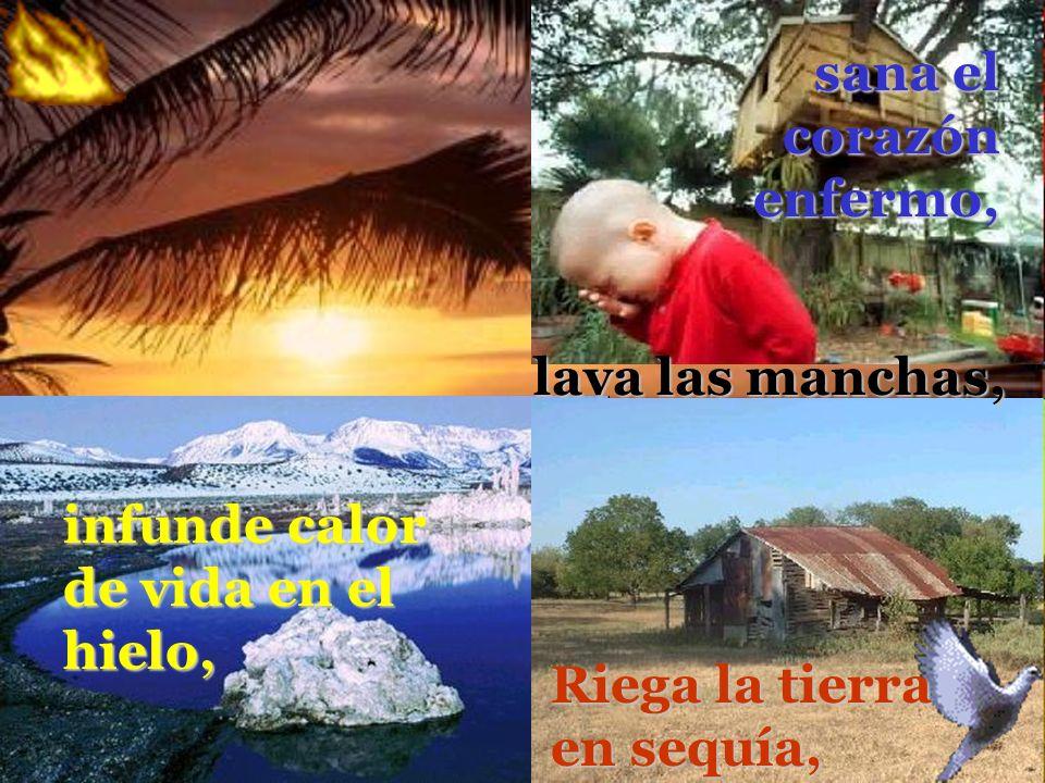 infunde calor de vida en el hielo, Riega la tierra en sequía, sana el corazón enfermo, lava las manchas,