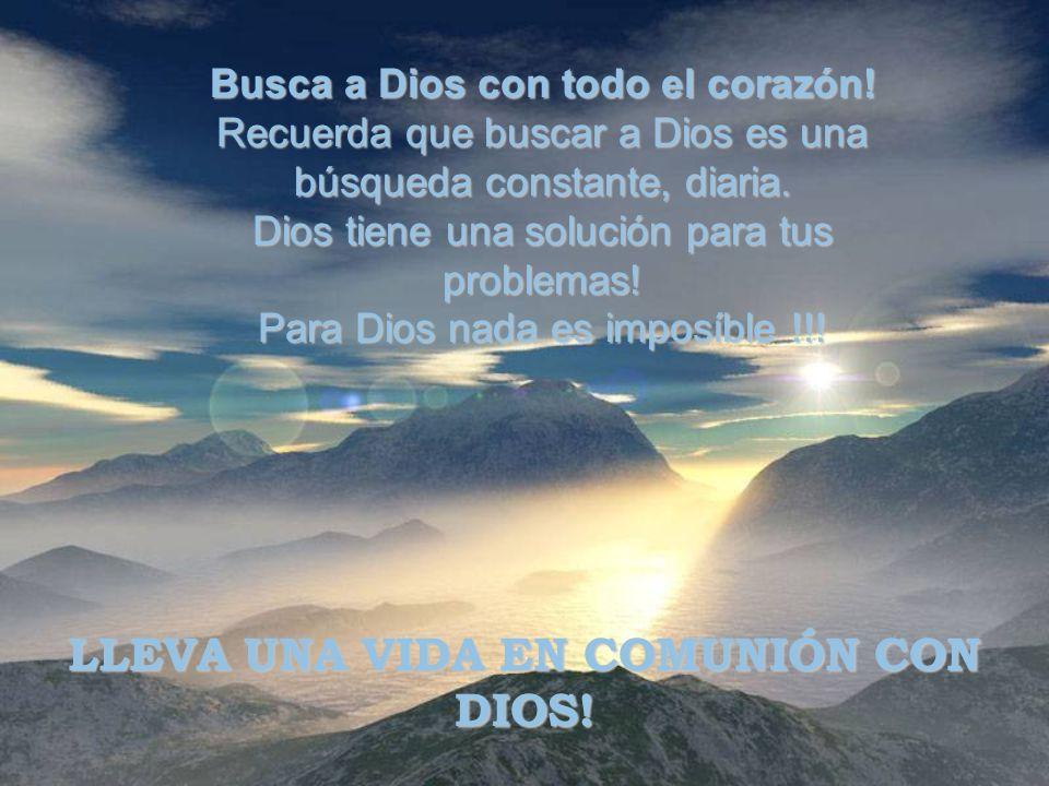 Busca a Dios con todo el corazón.Recuerda que buscar a Dios es una búsqueda constante, diaria.