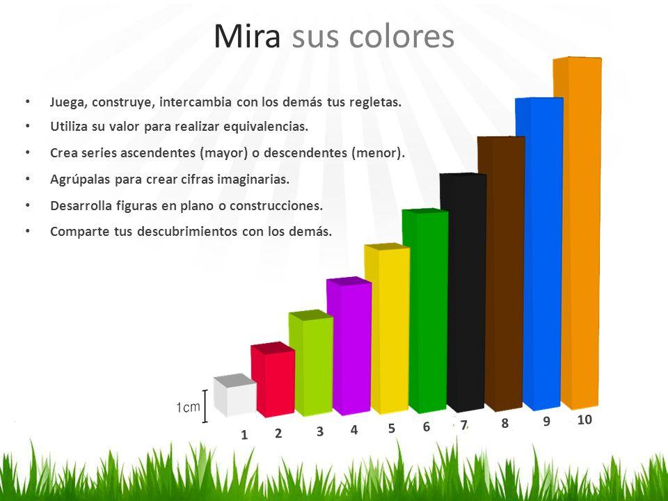 Mira sus colores Juega, construye, intercambia con los demás tus regletas. Utiliza su valor para realizar equivalencias. Crea series ascendentes (mayo